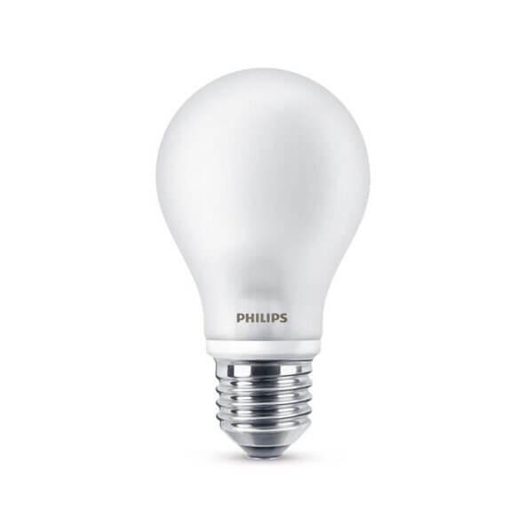 ampoule LED philips professionel